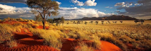 namibia_desert_0